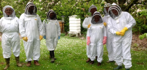 Beekeeping Course